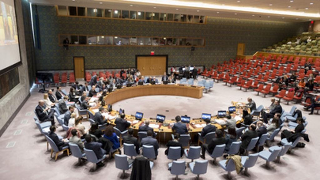 Conseil de Securite de l'ONU