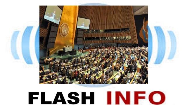 Assemblee Generale de l'ONU