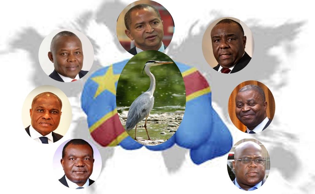 Freddy Matungulu, Martin Fayulu, Vital Kamerhe , Moise Katumbi, Jean-Pierre Bemba Adolphe Muzito, Felix Tshisekedi